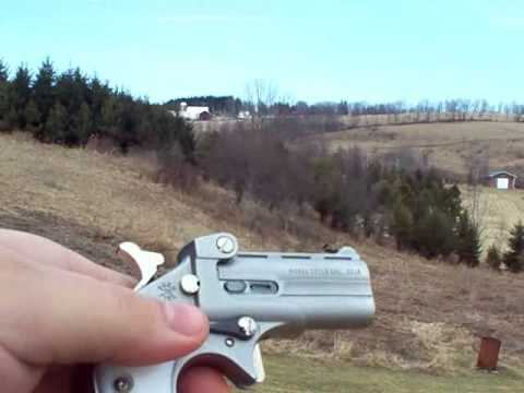 Gun Stuff: Shooting Cobra 22LR Derringer