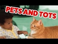 The Funniest Pets Meet The Cutest Kids & Babies of 2016 Weekly Compilation | Funny Pet Vid