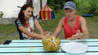 Дуриан в первый раз. Роман, остров Самал 2017. Roman, Durian for the first time  Samal 2017