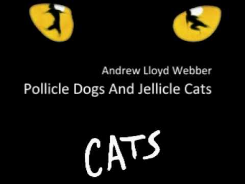 Pollicle Dogs And Jellicle Cats