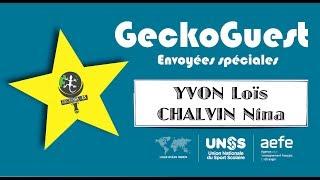 GeckoGuest #6 Rallye Art Danse