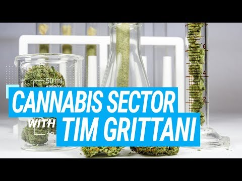Tim Grittani and Michael Hudson Cannabis Stocks Sector