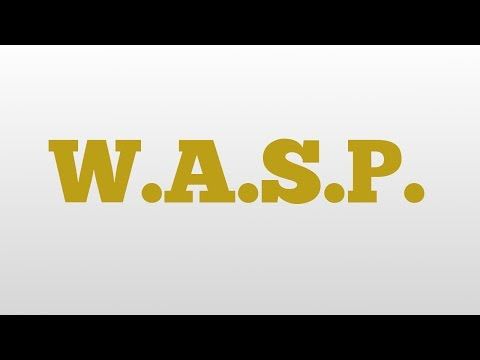 W.A.S.P. meaning and pronunciation