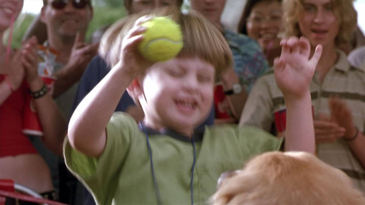 10 Silliest Movies About Animals Playing Sports | Bleacher