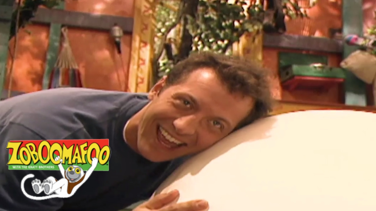 Zoboomafoo 135 - Who's in the Egg? | HD | Full Episode