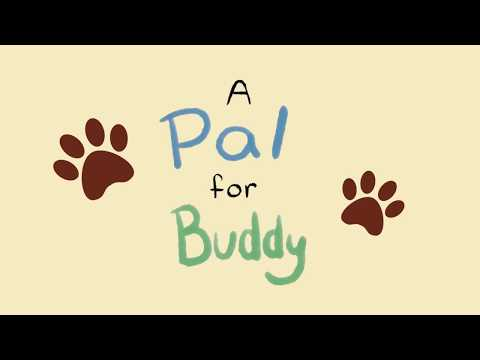 A Pal for Buddy