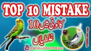 10 ghaltian colony cage main. what are the top 10 mistake in colony cages. video 153