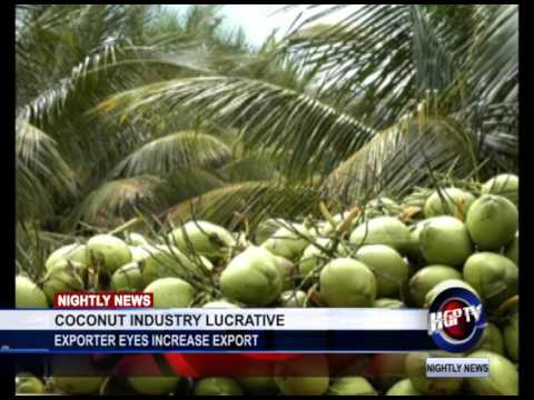 COCONUT INDUSTRY LUCRATIVE