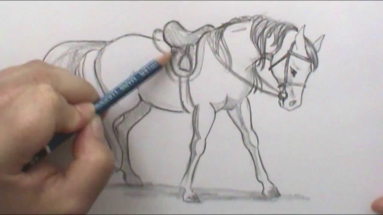 Bonus: How To Draw An English Saddle Narrated