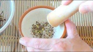 擂りたての香りが一番です、粉山椒の作り方  How to make Japanese pepper powder