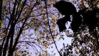 The Haxan Cloak - In Memoriam