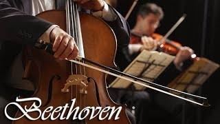 Beethoven Classical Music for Studying, Concentration, Relaxation | Study Music | Instrumental Music