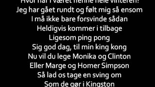 Djämes Braun - Fugle Lyrics