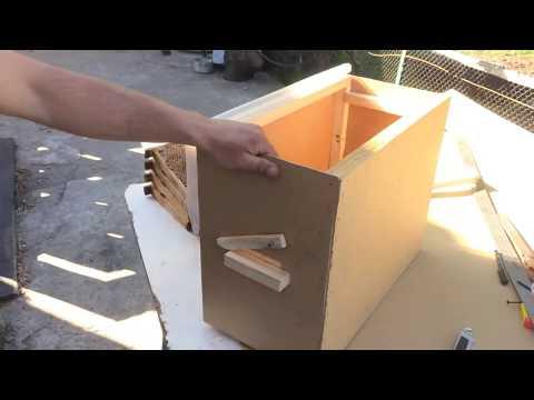 Ловушки для роя пчел своими руками видео