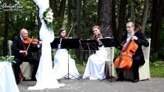 Amatiss - Свадебная регистрация - усадьба Середниково.mpg