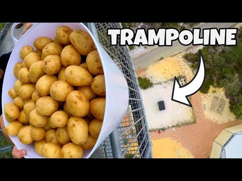 200 POTATOES Vs TRAMPOLINE from 45m!