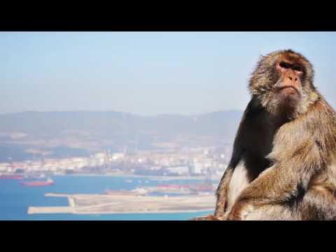 Porthole - Gibraltar