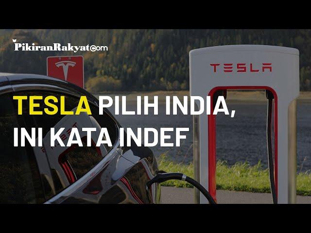 Tesla Lebih Pilih India daripada Indonesia, Indef: Mungkin Pendekatannya Kurang Meyakinkan