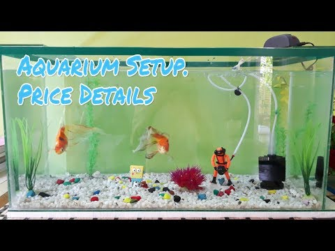 Complete Aquarium (2.5 Feet) Setup With All Price Details | Best Budget Fish Tank | CrazyF India