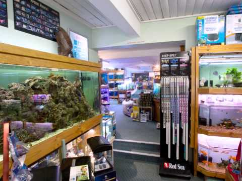 Annerley Aquarium