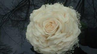 Гламелия — Розамелия  в подарочной коробке. Glamelia - Rosemelia in a gift box.