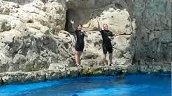 Texas State Aquarium Highlights - Corpus Christi