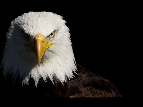 "The Eagles ""Lyin' Eyes"" with Lyrics"