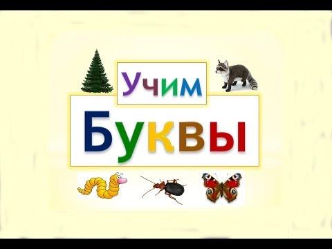 Учим турецкие слова в картинках