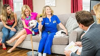Home & Family Pets - Keeping Your Pets Safe in the Heat - Hallmark Channel