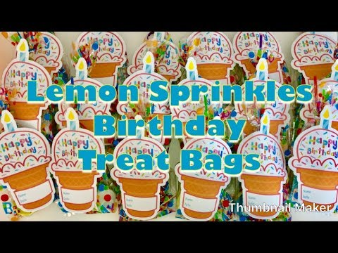 Birthday Party Gift Goodie Bags