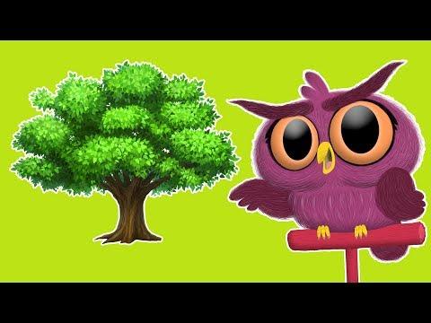어린이를위한 식목일 | 나무 심기 휴일