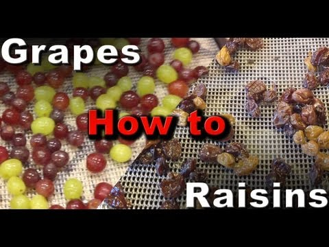 How to make Raisins Dehydrated Grapes
