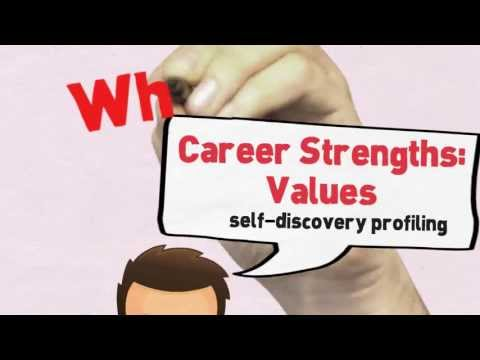 What is the Career Strengths: Values?