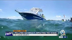 Near-shore reefs in St. Lucie County showing impacts from Indian River Lagoon