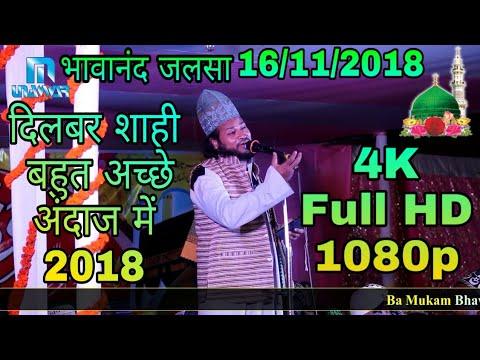 Dilbar shahi New