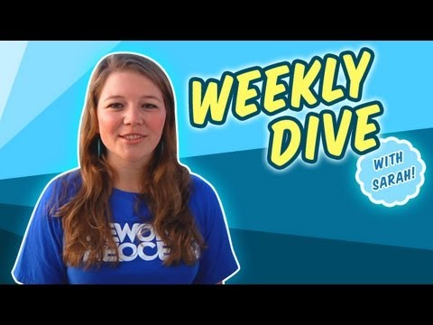 Weekly Dive: Cocos Island and Sea Stars
