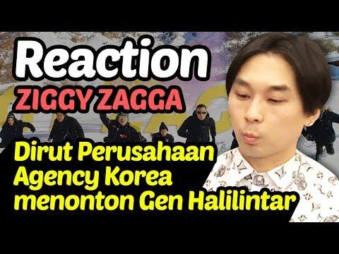 [Ziggy Zagga] Video Reaksi Dirut Perusahaan Agensi : Gen Halilintar - Ziggy Zagga