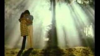 Download lagu Paaramal Paartha Nenjam Poonthotta Kaaval Kaaran MP3