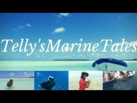 Introducing Telly'sMarineTales | Discover a bit about me as a marine biologist