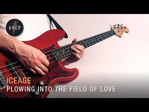 Iceage - Plowing Into The Field Of Love (Bass Cover/Lesson)