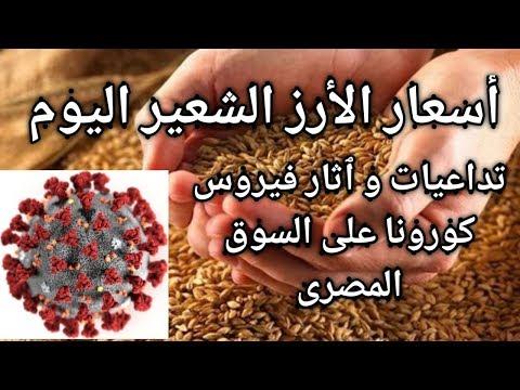 أسعار الأرز الشعير اليوم فى مصر السبت 21/3/2020 - تداعيات و آثار فيروس كورونا على السوق المصرى