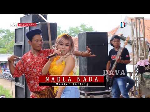 Si darno reseh jaluk nambah lagu - Warung cetol - Desy Paraswaty - NAELA NADA Live Gebang