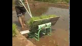 Handle Type Rice Transplanter