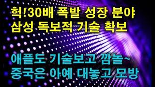 헉! 30배 폭발 성장~ 삼성 독보적 기술 확보!