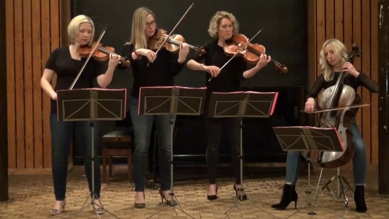 The Rose String Quartet | String Quartet Hertfordshire | Alive Network
