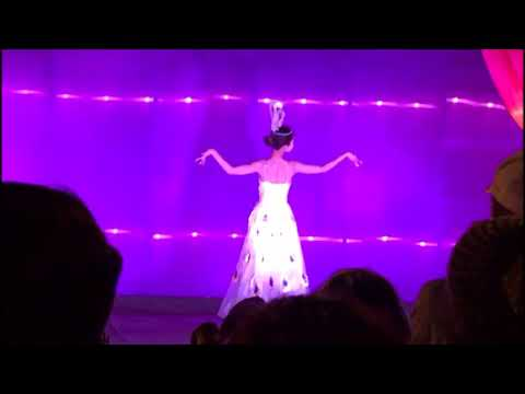 Chicago Dragon Lights Night Performances
