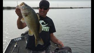 Fall Bass Fishing Tips & Tricks!