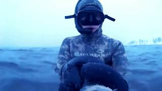 "У нас свое ""Подводное Jumanji"""