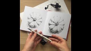 Чернильный марафон. Первый урок: как штриховать и рисовать тушью. Запись прямого эфира.