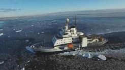 Arktinen kattaus: Merijään murtajat